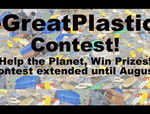 The Great Plastic Fast Contest