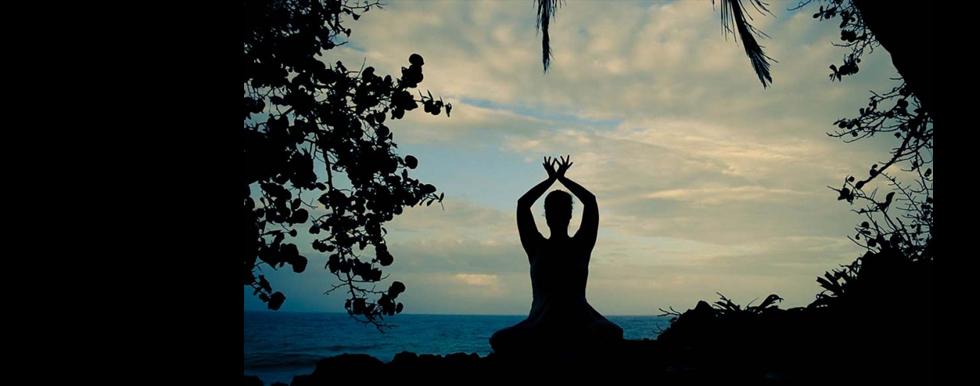 Meditate980x386