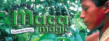 Maca Magic supports Matthew Human